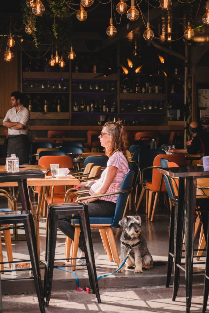 Restaurantes e locais pet friendly